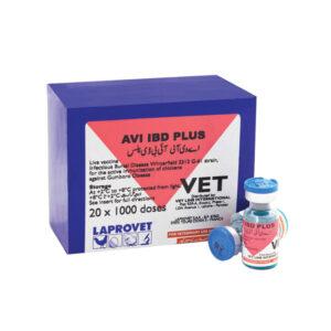 IBD Plus